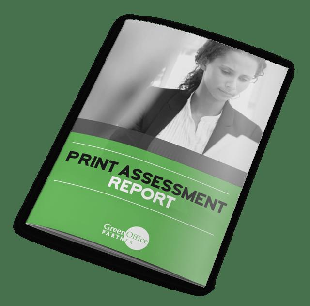 print-assessment-report.png