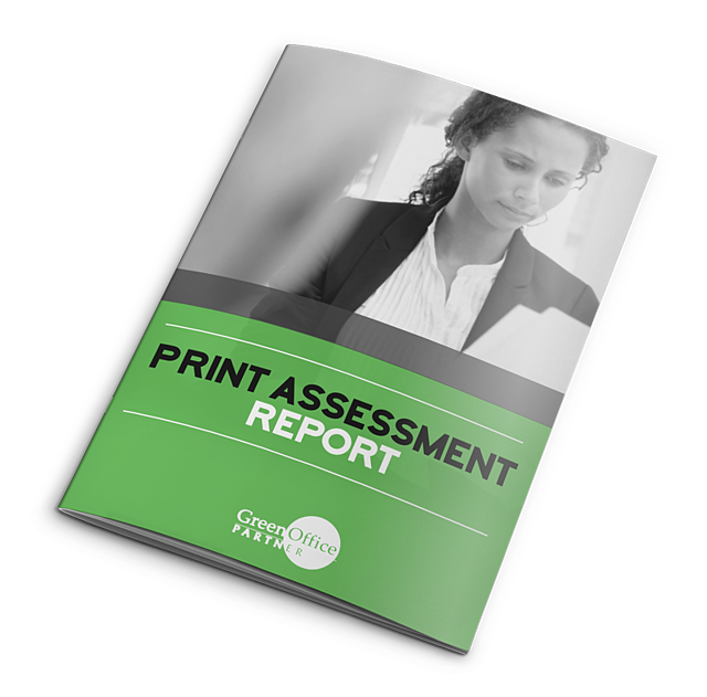 print-assessment-report.png